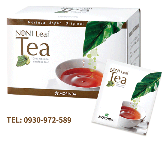 諾麗茶 Noni Leaf Tea